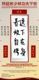 ShiYanbin Beginner сertif 3 20x41 curve_1