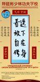 ShiYanbin сertif QI GONG 20x41 curve_2