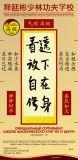 ShiYanbin сertif QI GONG 20x41 curve_3