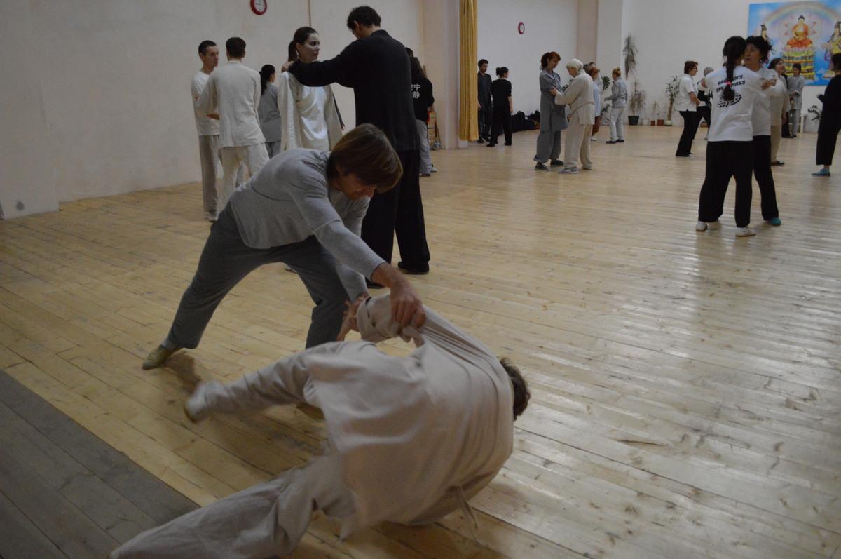семинар мастера ши янбина 11